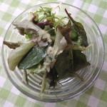グリーンサラダ リンゴ酢のヴィネグレット×リッチなシャルドネ