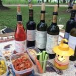 【日本ノムリエ協会】公園ワイン会 in 武蔵野中央公園
